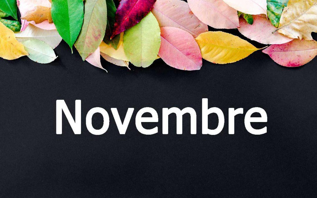 Découvrez les recettes de novembre et 3 enseignements !