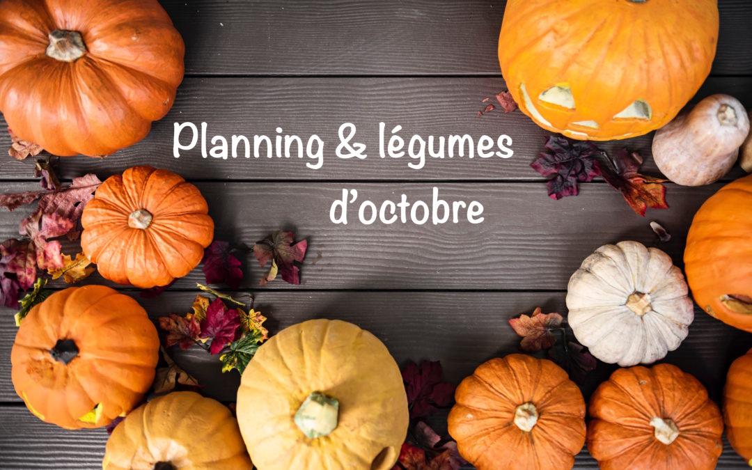 Le planning d'octobre de Super Boîte à Lunch